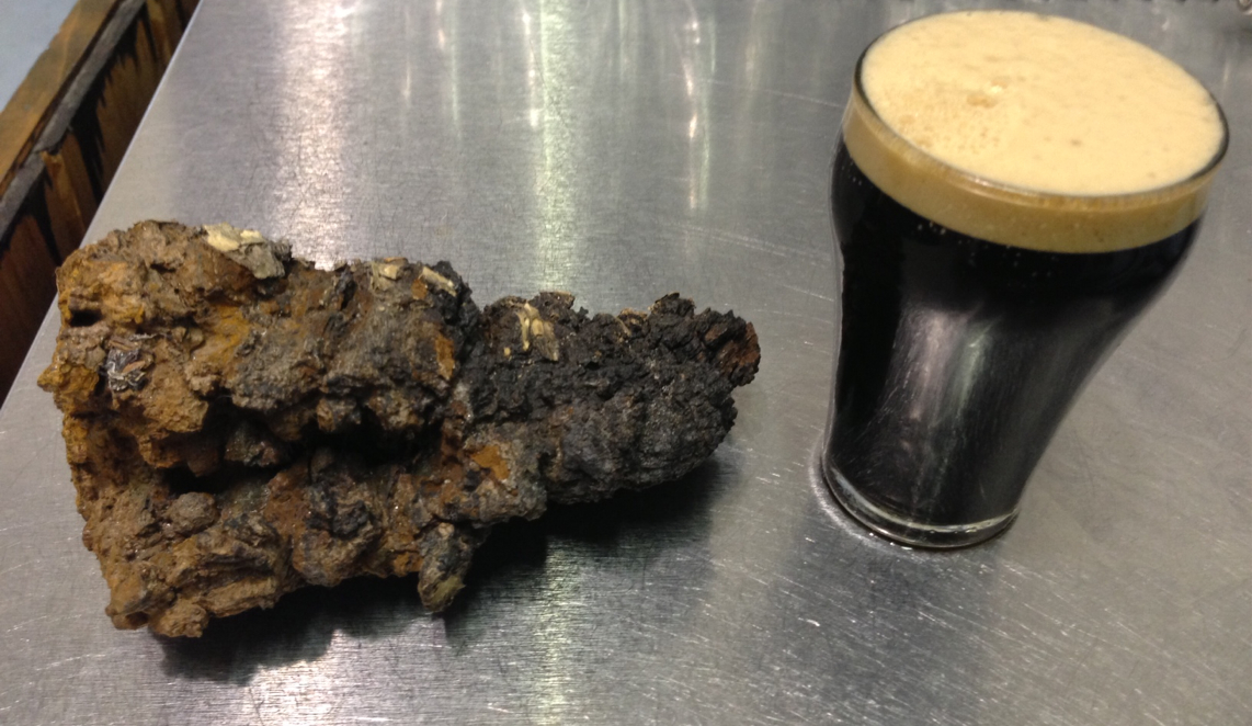 Whole NH Chaga Next to Throwback Brewery's No More Mr. Funghu