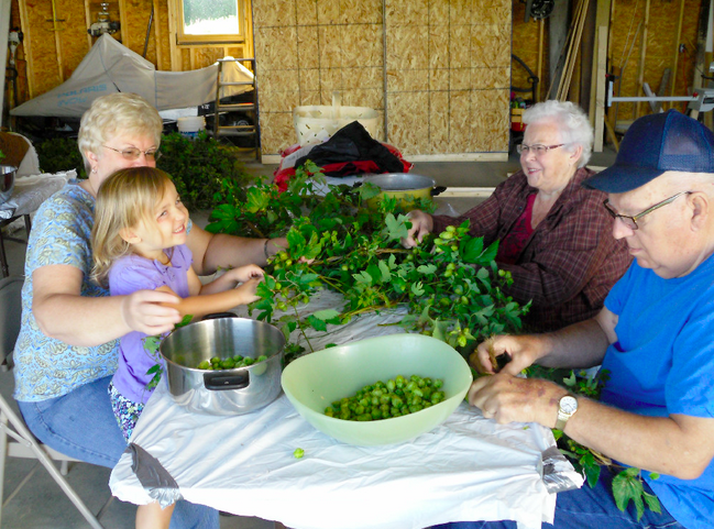 Help Aroostook Hops and Help Us Meet Our Vision